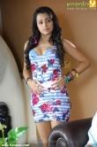 trisha_krishnan_latest_stills-00142