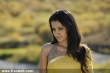 trisha_latest_stills60