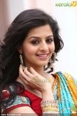 actress-vedika-images-00376