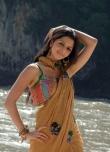 vedhika-photos-02622