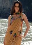 vedhika-photos-02772
