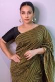 vidya balan saree photos-015