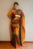 vidya balan saree photos-020