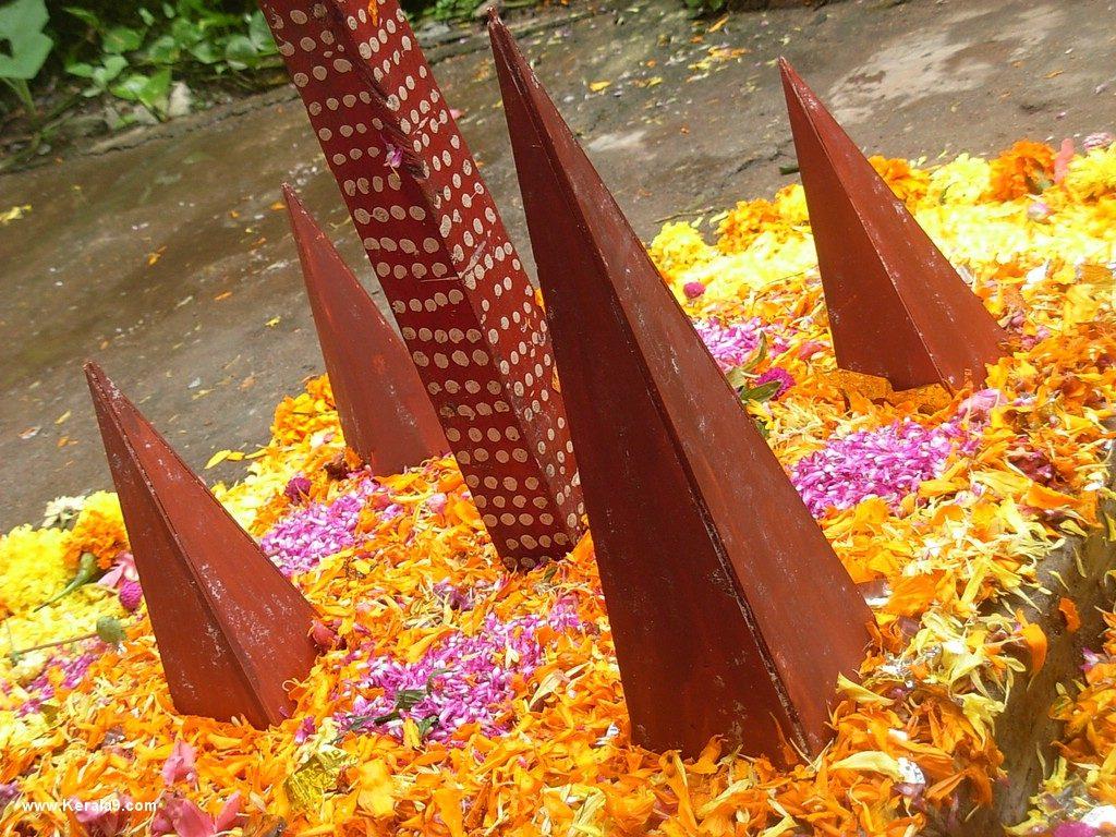onam pookalam designs 2015 photos 2