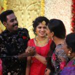 senthil krishna rajamani wedding reception photos 077
