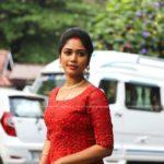 Actress Darshana Das Wedding Photos 006